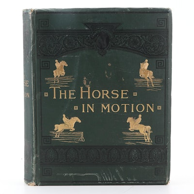 "Illustrated ""The Horse in Motion"" by J. D. B. Stillman, 1882"