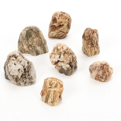 Chinese Scholar Stones and Other Mineral Specimen