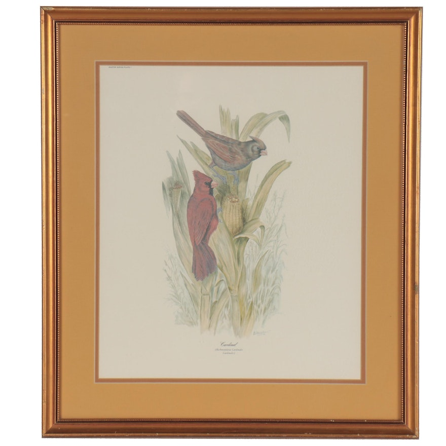 """Offset Lithograph after E.D. Williams """"Cardinals,"""" Late 20th Century"""