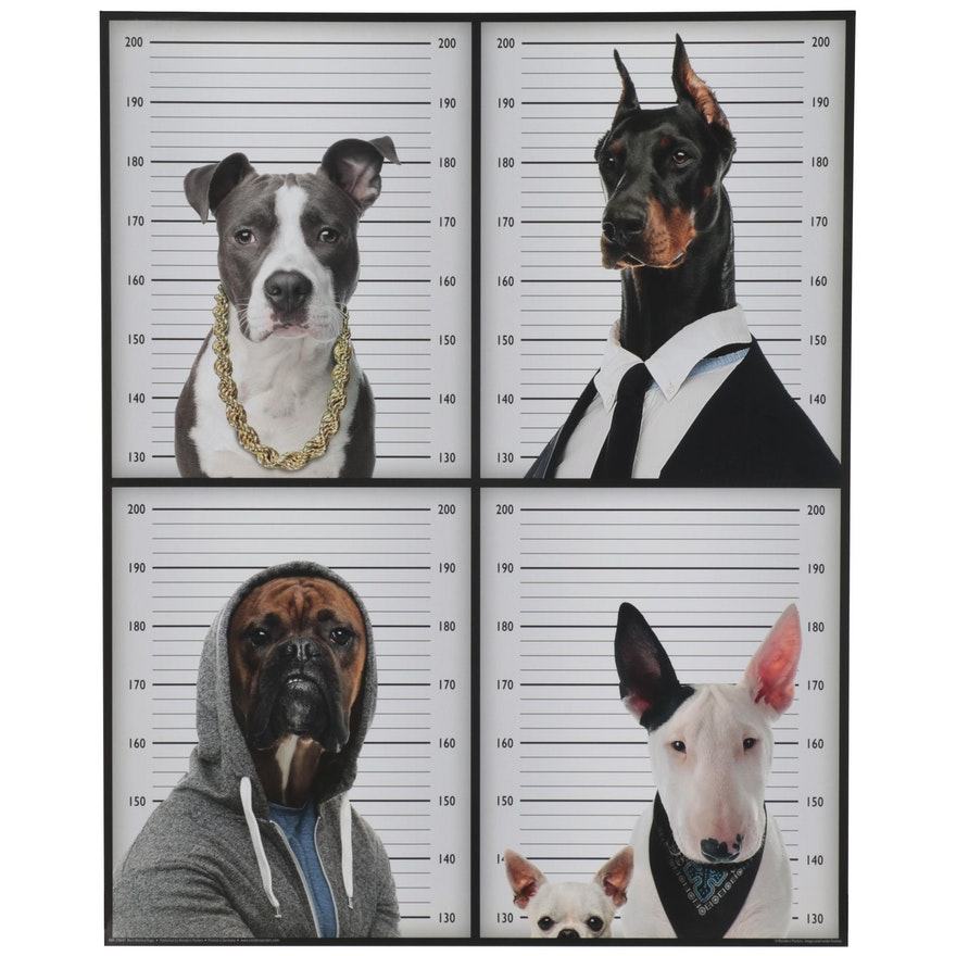 """Offset Lithograph """"Most Wanted Dogs,"""" 21st Century"""