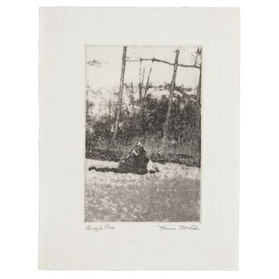 """Thomas Norulak Photo Transfer Etching """"Ohiopyle Rock,"""" 2012"""