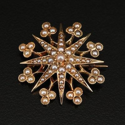 Victorian 14K Pearl Star Converter Brooch