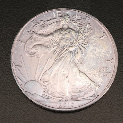 Toned 2010 $1 American Silver Eagle Bullion Coin