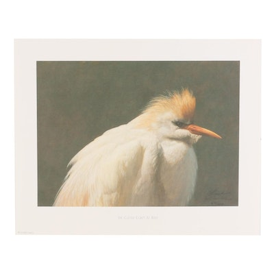 "Jeff Gandert Offset Lithograph ""The Cattle Egret at Rest,"" circa 1994"