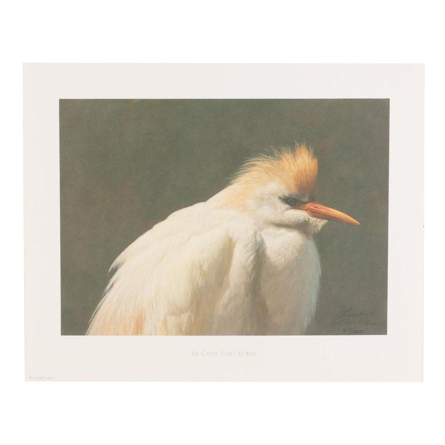 """Jeff Gandert Offset Lithograph """"The Cattle Egret at Rest,"""" circa 1994"""