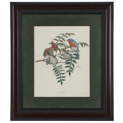 """Ray Harm Offset Lithograph """"Eastern Bluebird,"""" Late 20th Century"""