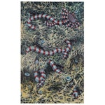 """Amy Kollar Anderson Oil Painting """"Worm,"""" 2002"""