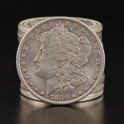 Twelve Morgan Silver Dollars