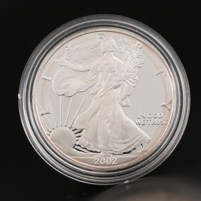 2002-W American Silver Eagle Proof Bullion Coin
