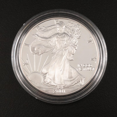 2001-W American Silver Eagle Proof Bullion Coin