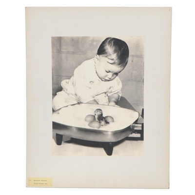 """Silver Gelatin Photograph Attributed to Morris Berman """"Incubator Pheasant"""""""