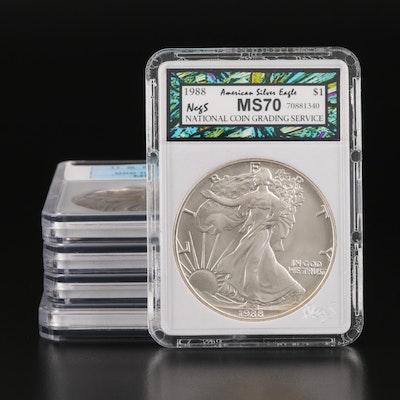 Five American Silver Eagles