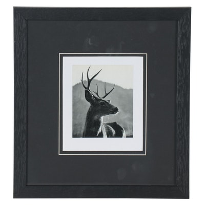"Gravure Reproduction after Ansel Adams ""Buck,"" circa 1950"