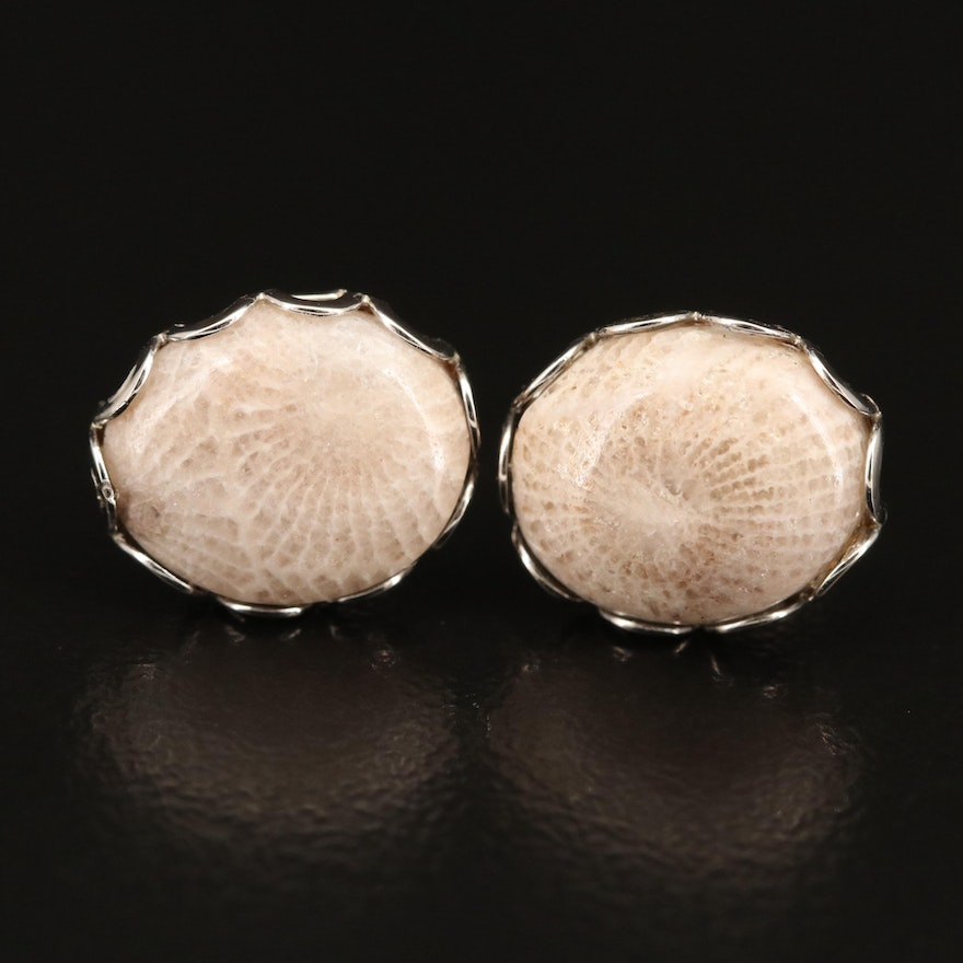 Fossilized Coral Stud Earrings