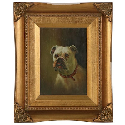 Oil Painting of Bull Dog Portrait