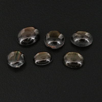 Loose 12.52 CTW Black Star Sapphire Cabochons