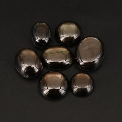 Loose Round and Oval Black Star Sapphire Cabochon