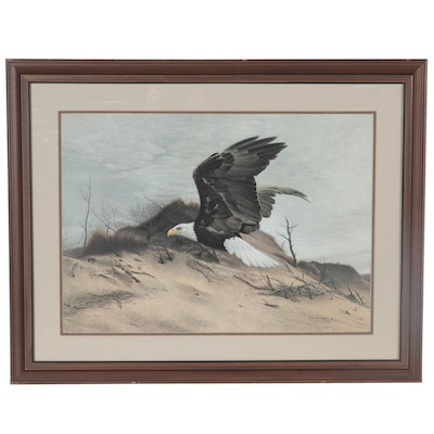 "Charles Fracé Offset Lithograph ""American Eagle at Walking Dunes"""