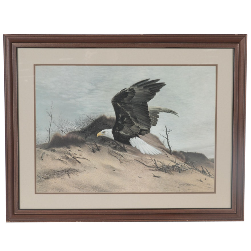 """Charles Fracé Offset Lithograph """"American Eagle at Walking Dunes"""""""
