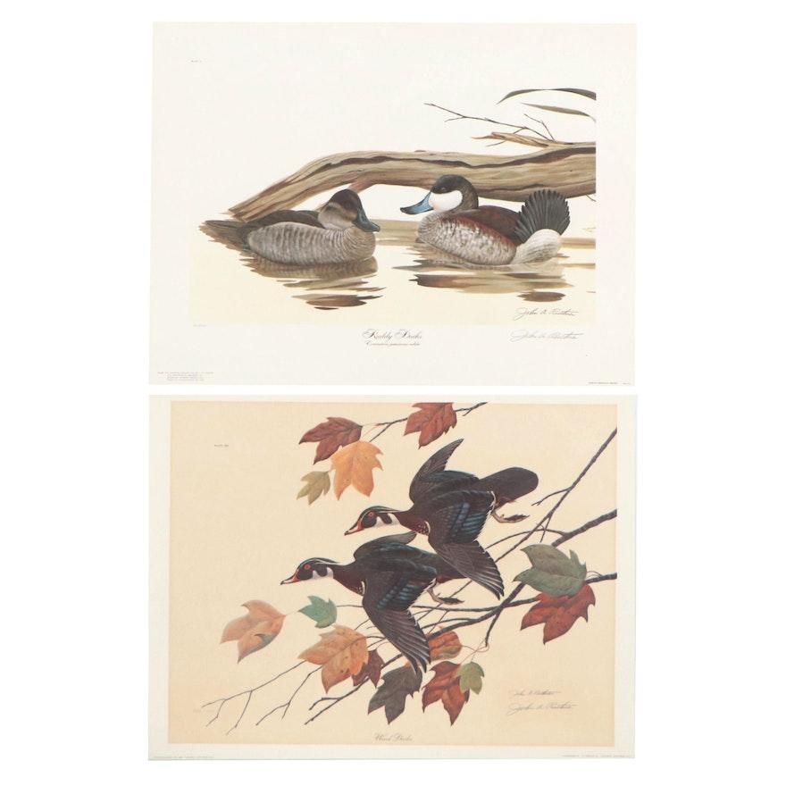"""John A. Ruthven Offset Lithographs """"Ruddy Ducks"""" and """"Wood Ducks"""""""