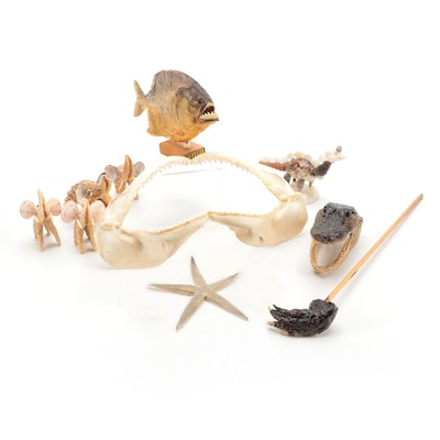 Collection of Aquatic Decor Including Starfish Elephant Figurines and Piranha