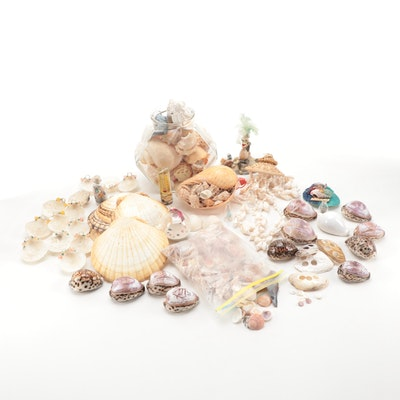 Novelty Seashells, Souvenirs, Wind Chimes and Ornaments