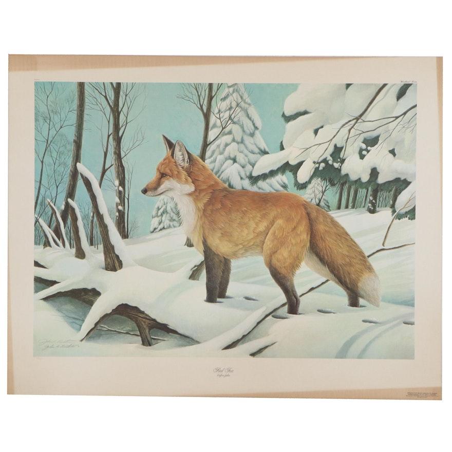 """John Ruthven Offset Lithograph """"Red Fox,"""" 1979"""