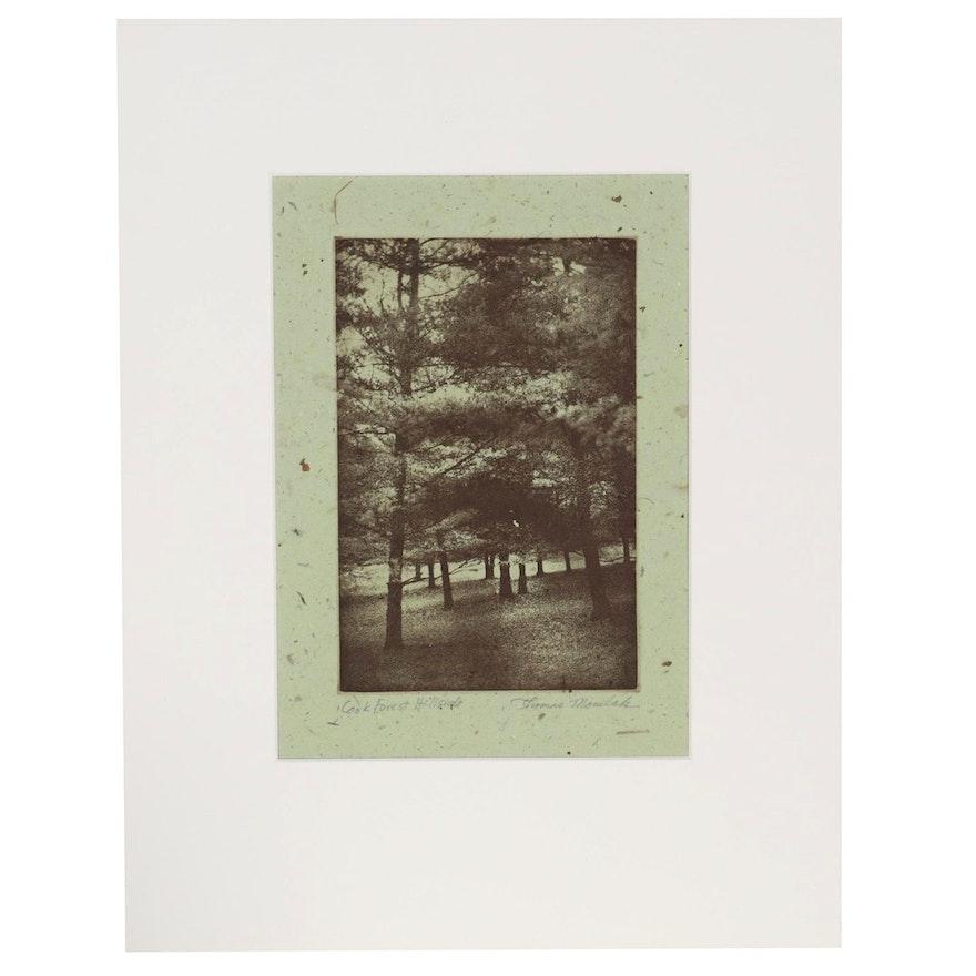 "Thomas Norulak Etching on Handmade Paper ""Cook Forest Hillside - HMP,"" 2004"