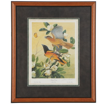 """John A. Ruthven Offset Lithograph """"Northern Orioles,"""" Late 20th Century"""