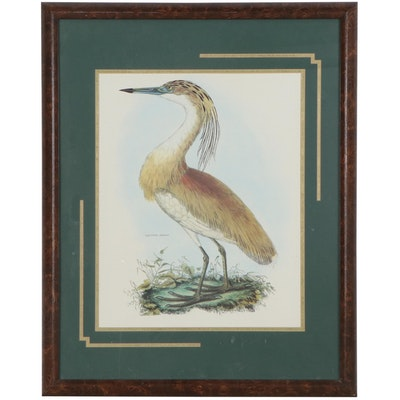 Offset Lithograph of Squated Heron, Late 20th Century