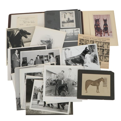 Silver Print and Chromogenic Photographs of Family Show Dog and Horse