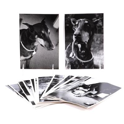 "Robert Szesko Photograph Album ""Calypso of Dobemar,"" Mid-20th Century"