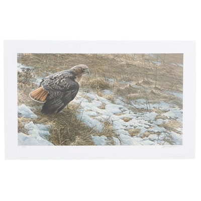 "Robert Bateman Offset Lithograph ""Spring Thaw - Red-Tailed Hawk,"" 1995"