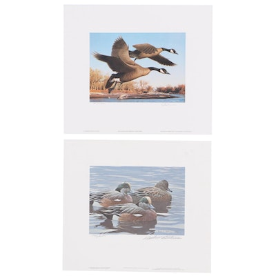 Robert Steiner and Robert Bateman Offset Lithographs of Waterfowl with Stamps