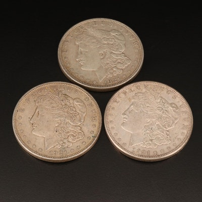 Three 1921-D Morgan Silver Dollars