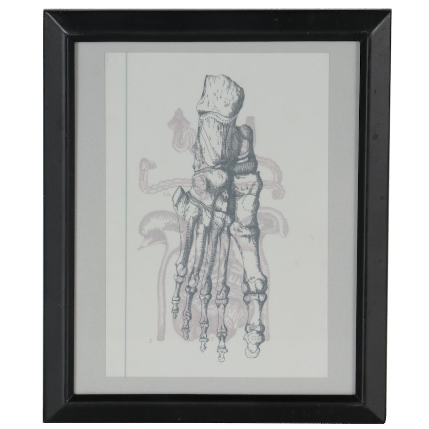 """Kate Dowell Ink Drawing """"Anatomical Study"""""""