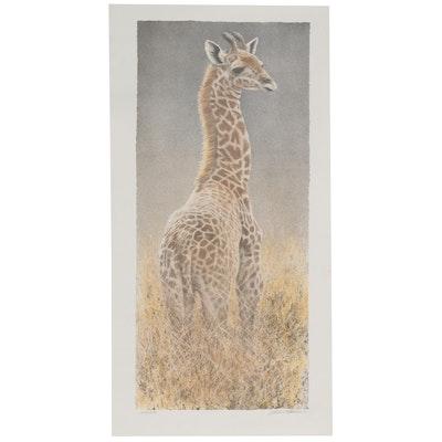 "Robert Bateman Lithograph ""Young Giraffe,"" Late 20th Century"