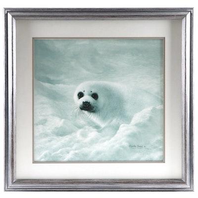"Charles Fracé Offset Lithograph ""Baby Harp Seal"", Circa 1980"