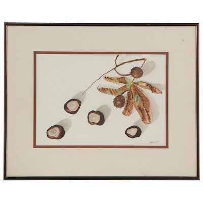 Ralph A. Bankert Watercolor Painting of Buckeyes, 1985