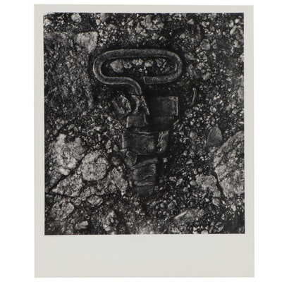 "Don Jim Silver Gelatin Photograph ""Opened,"" Circa 1978"