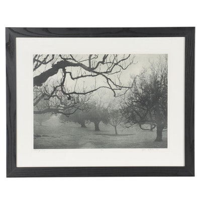 "Stephen McMillan Etching with Aquatint ""Morning Fog,"" 1977"