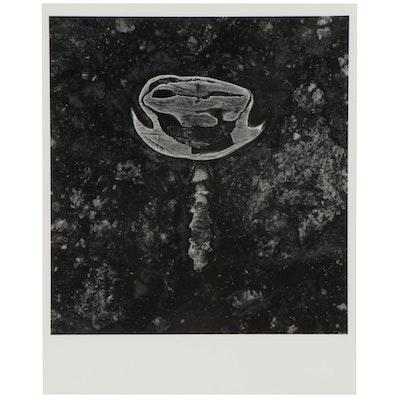 "Don Jim Silver Gelatin Photograph ""Grin,"" Late 20th Century"