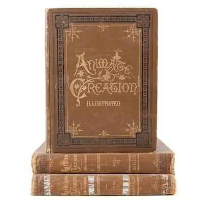 "Illustrated ""Animate Creation"" Three-Volume Set by J. G. Wood, Late 19th Century"