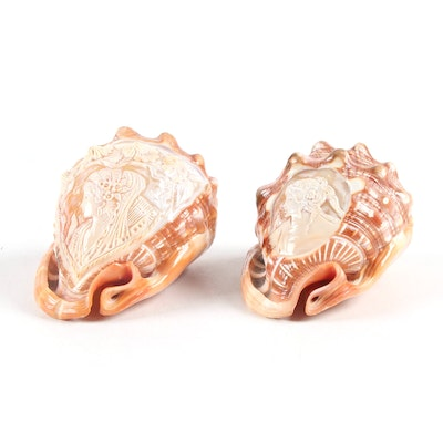 Italian Hand-Carved Cameo Conch Shells
