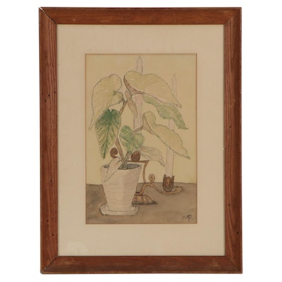 Still Life Watercolor Painting of Alocasia Plant, Mid to Late 20th Century