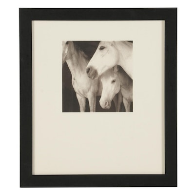 """Keith Carter Photogravure """"Coballos Blancos"""" for """"21st Editions,"""" 1998"""