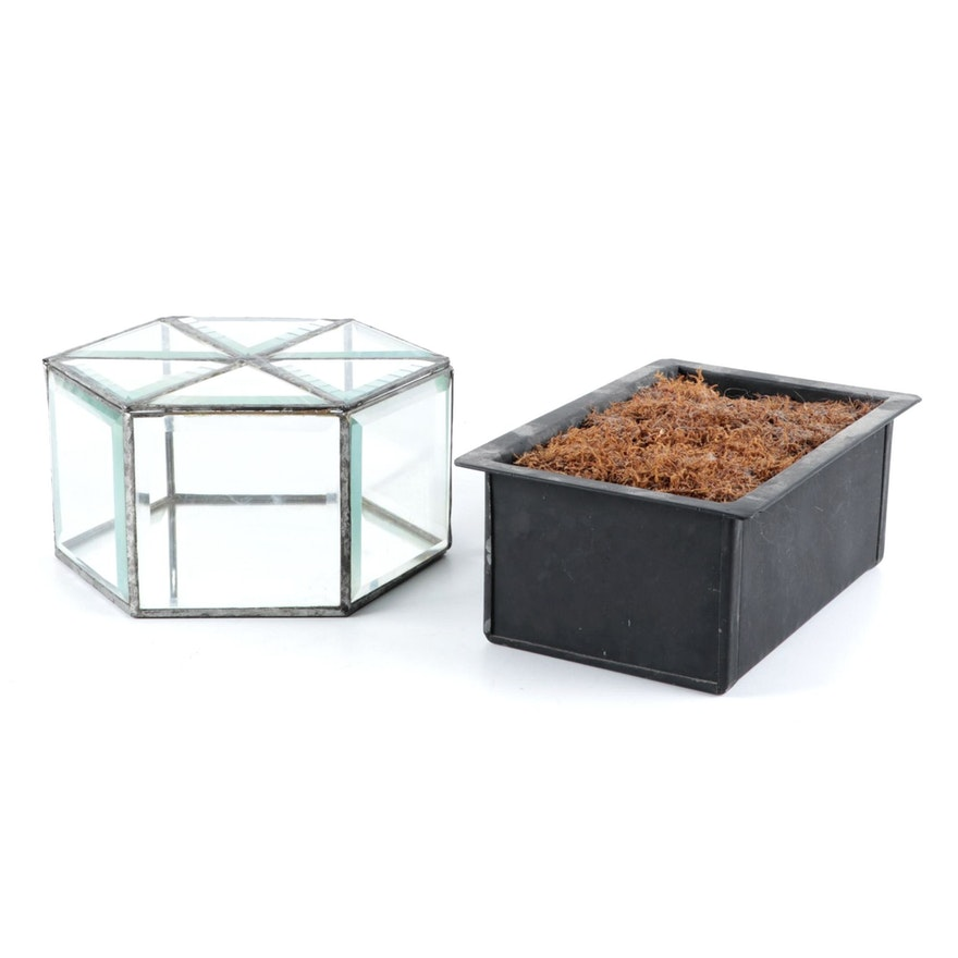 Beveled Glass Lidded Box with Faux Moss Metal Planter Box