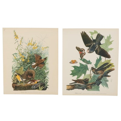 """Offset Lithographs After J. J. Audubon """"Meadow Lark"""" and """"Whip-Poor-Will,"""" 1964"""