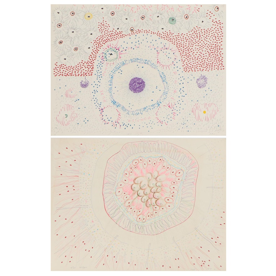 """Philip the Transplant Mixed Media Drawings """"The Organ"""" and More, 1977"""