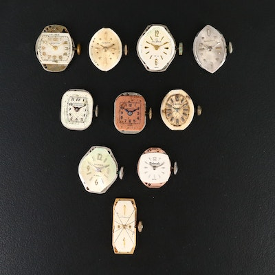 Variety of Swiss Watch Movements